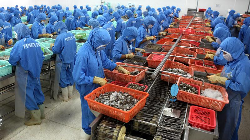 Trung Quốc, EU giảm nhập khẩu loạt mặt hàng nông sản Việt Nam lao dốc